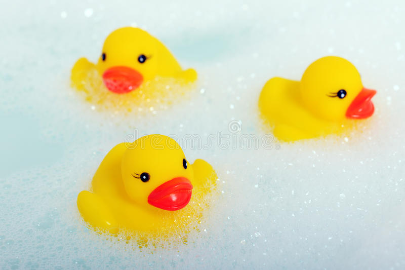 在泡沫的橡胶鸭子 库存图片
