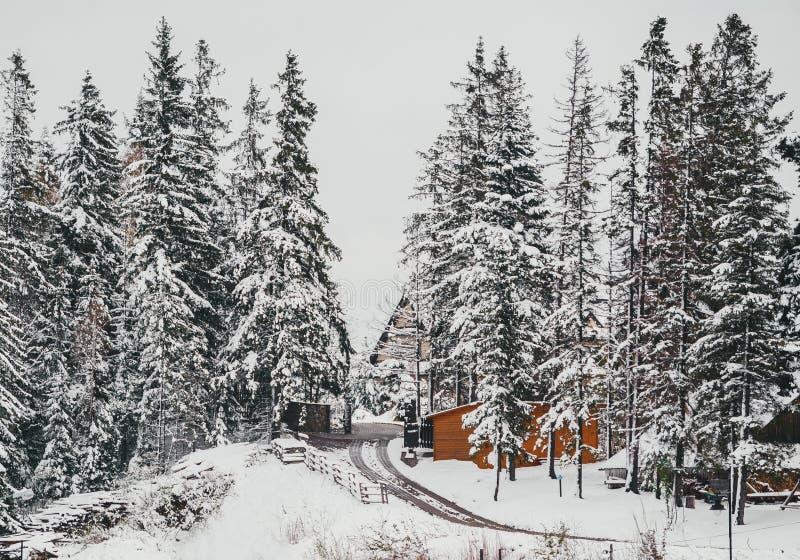 在波兰村庄谷的冬天路与老木房子 Tatra? 库存照片