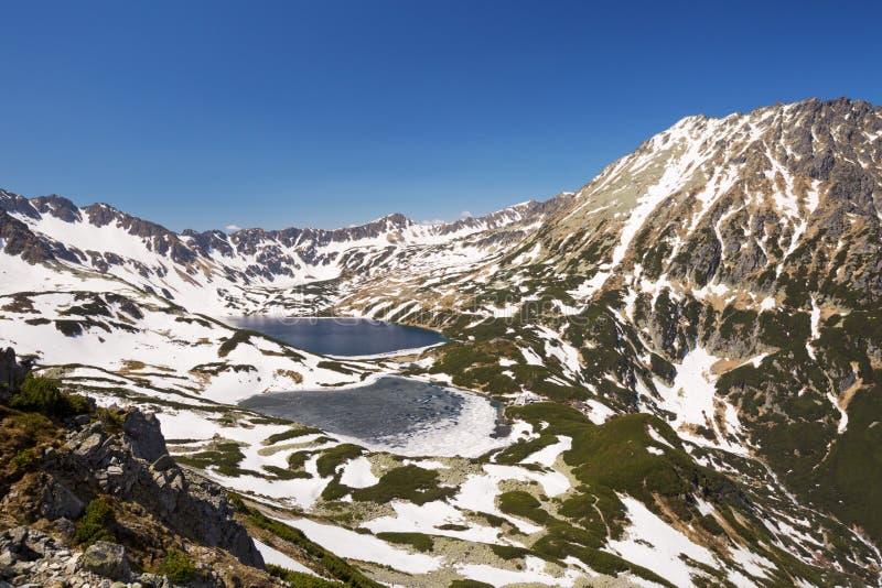 在波兰Tatra山的五个湖谷 免版税图库摄影