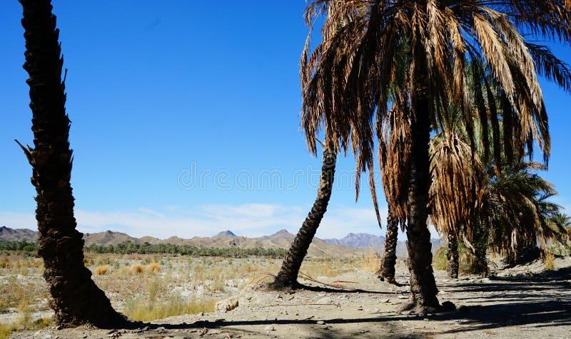 在波斯湾附近盐溶在sout伊朗的山, 库存图片