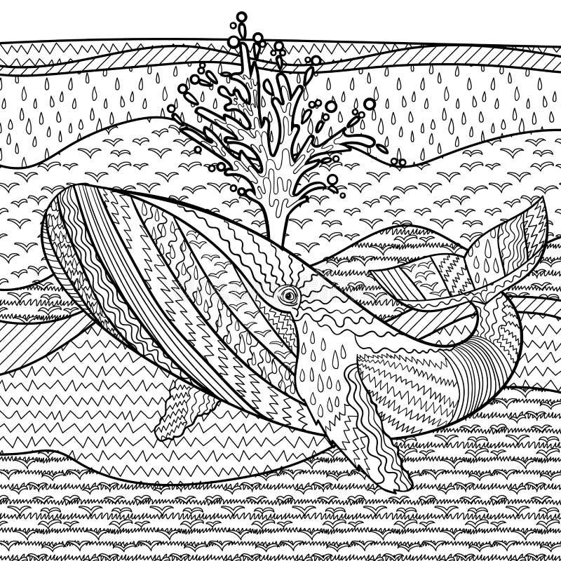在波浪的手拉的驼背鲸 库存例证