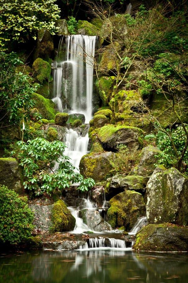 在波特兰日本人庭院的平静的瀑布 图库摄影