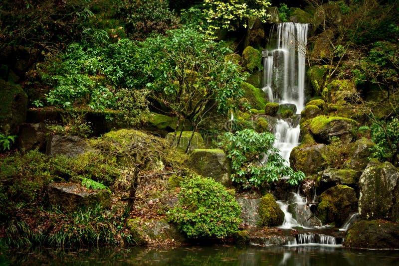 在波特兰日本人庭院的平静的瀑布 免版税库存照片