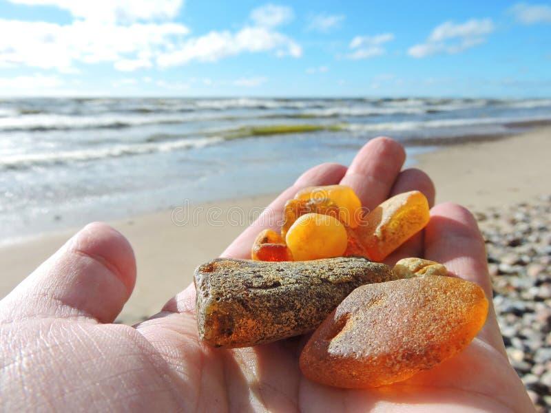 在波罗的海海岸,立陶宛的自然琥珀 免版税图库摄影