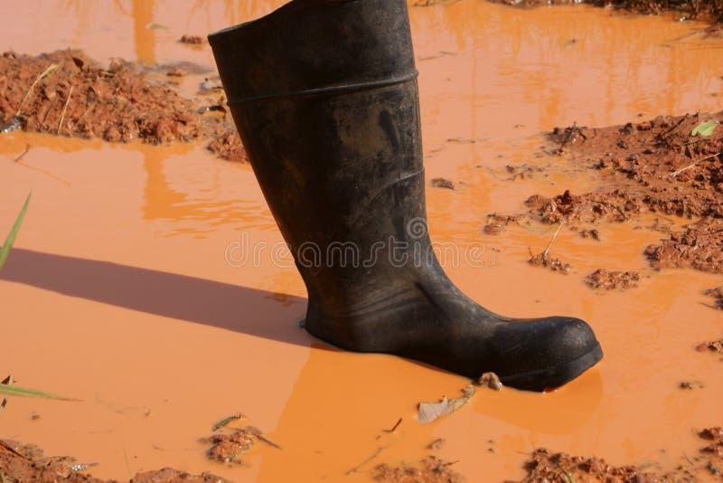 在泥困住的起动 免版税库存图片