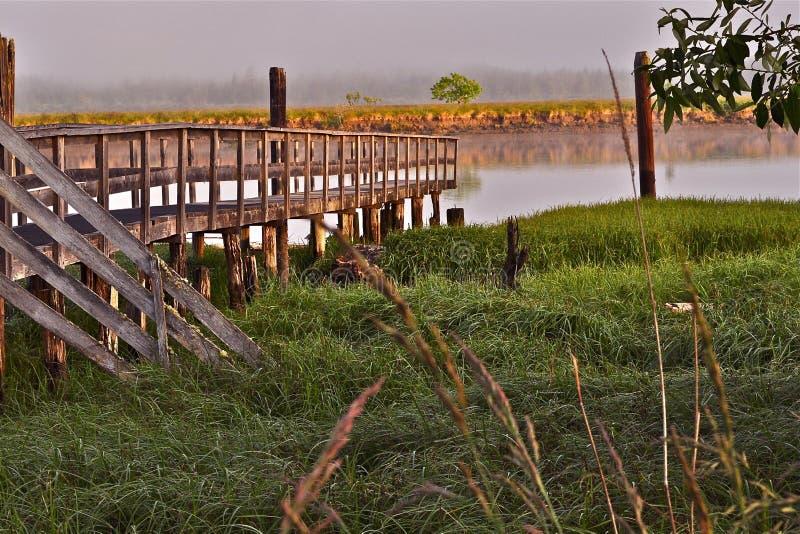 在泥沼太平洋海岸的老码头 免版税库存图片
