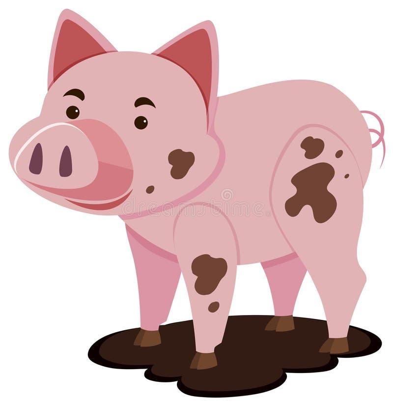 在泥泞的水坑的逗人喜爱的猪 库存例证