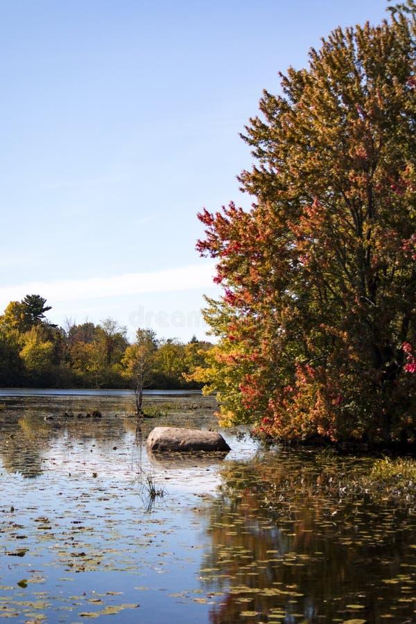 在泥湖的秋天颜色 免版税库存照片