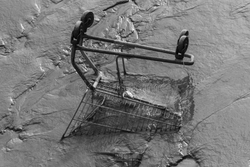 在泥的购物台车 免版税库存图片