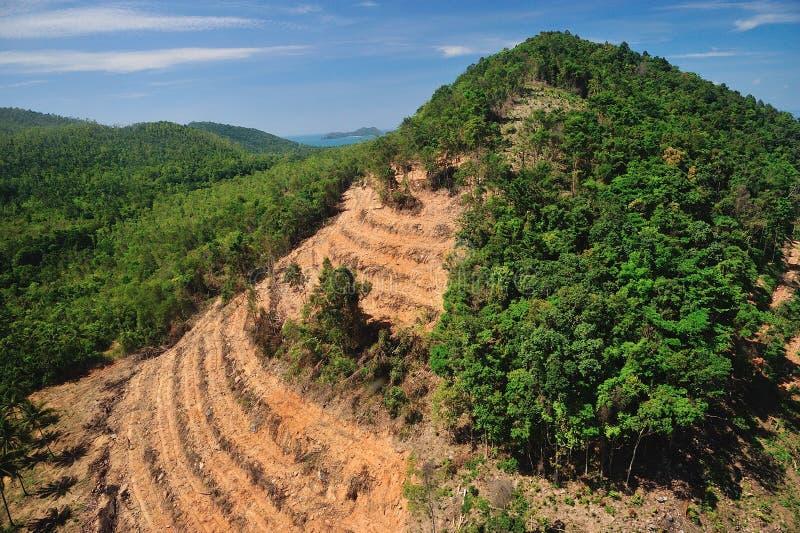 在泰国形式鸟瞰图的森林破坏 免版税库存图片