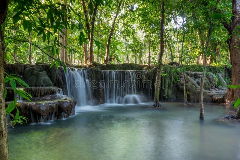 在泰国的热带密林掩藏的美丽的小瀑布 免版税库存图片