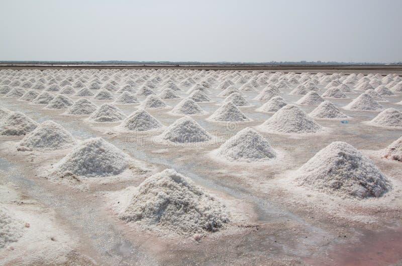 在泰国盐溶与被堆的海盐的领域 免版税图库摄影
