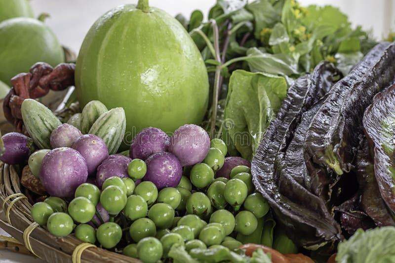 在泰国茄子、紫色四棱豆、苦涩金瓜、冬瓜和红色辣椒的菜 库存图片