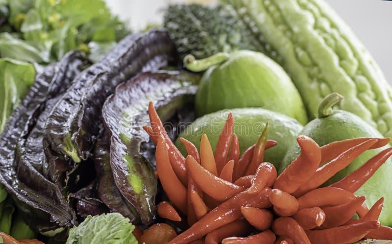 在泰国茄子、紫色四棱豆、苦涩金瓜、冬瓜和红色辣椒的菜 库存照片