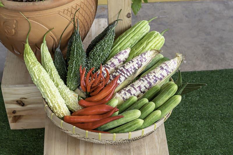 在泰国黄瓜、玉米、苦涩金瓜和红色辣椒的菜 免版税图库摄影