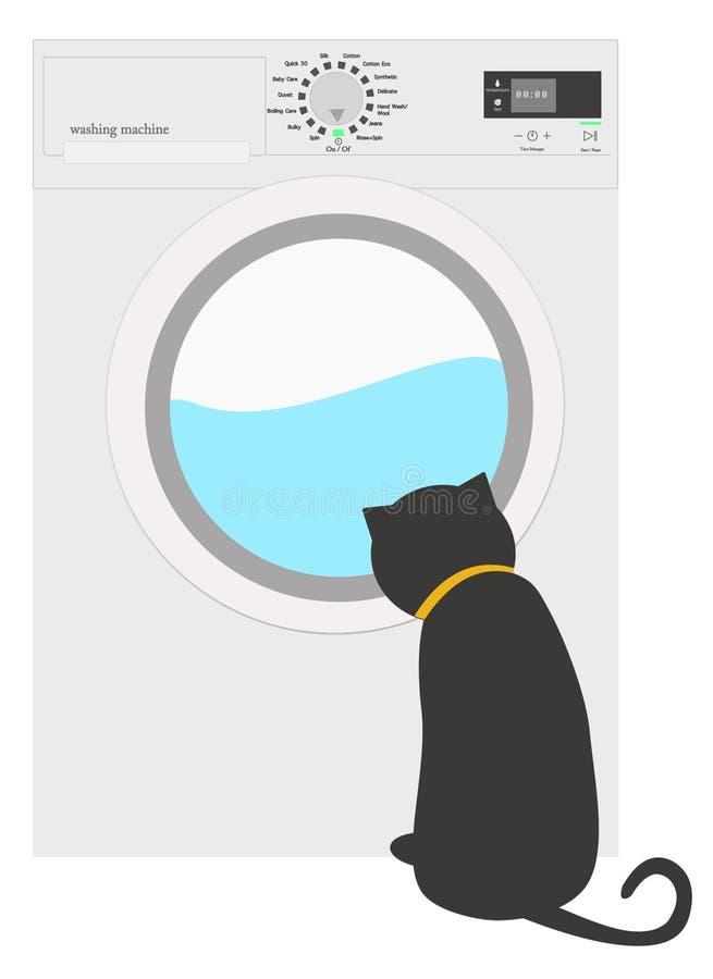 在洗衣机附近的一只猫 免版税库存图片
