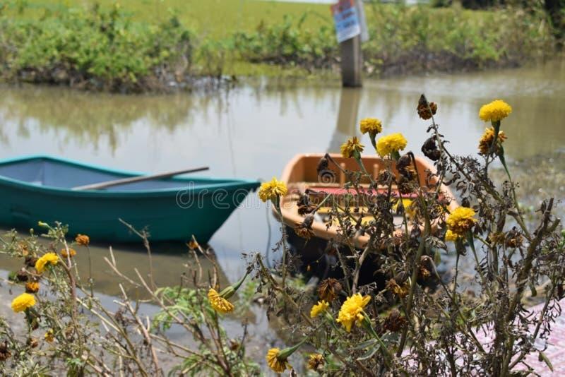 在洪水的一条小船 免版税库存图片
