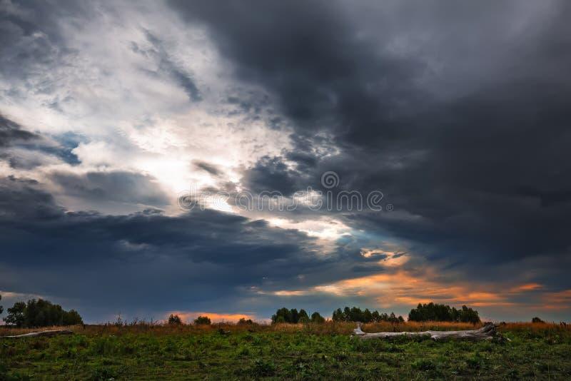 在洪水草甸的多雨早晨在鄂毕河附近 r 免版税库存图片