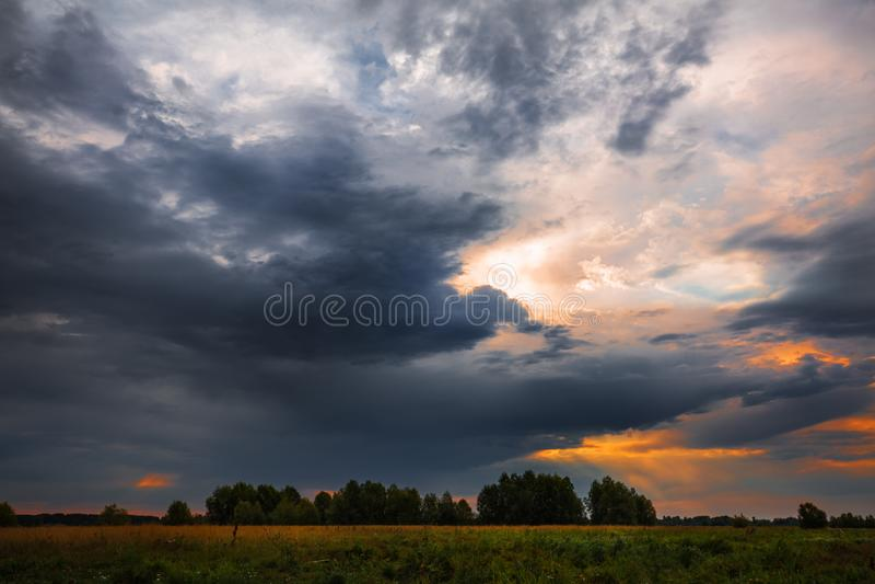 在洪水草甸的多雨早晨在鄂毕河附近 r 免版税库存照片
