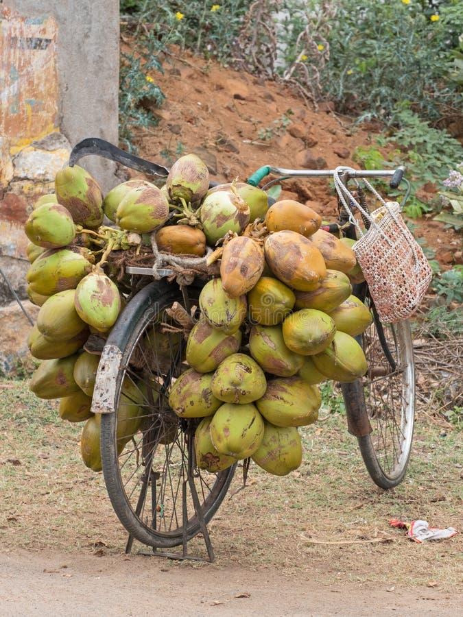 在活动中的椰子 免版税库存照片