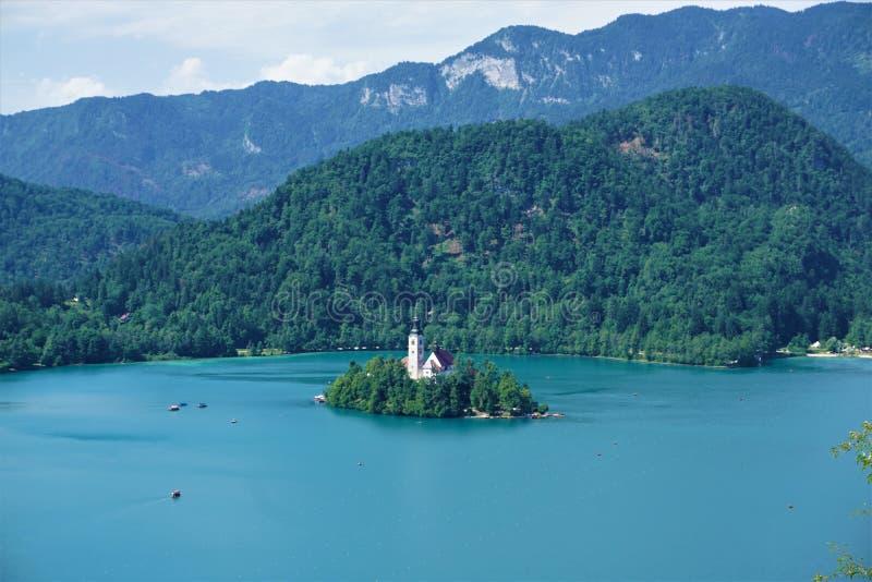 在流血的海岛附近的传统Pletna小船湖的流血 免版税库存照片