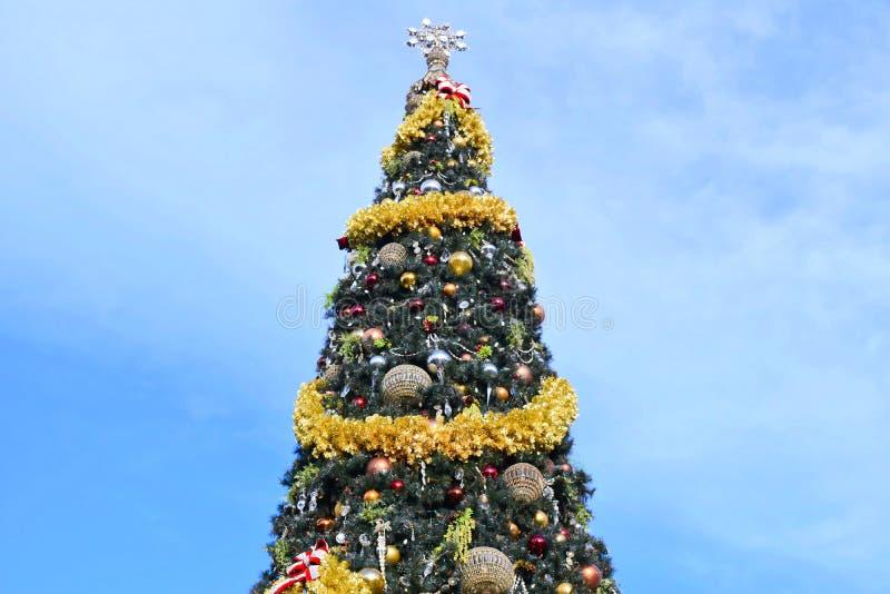 在浅兰的多云背景的装饰的圣诞树在布埃纳文图拉湖地区 库存照片