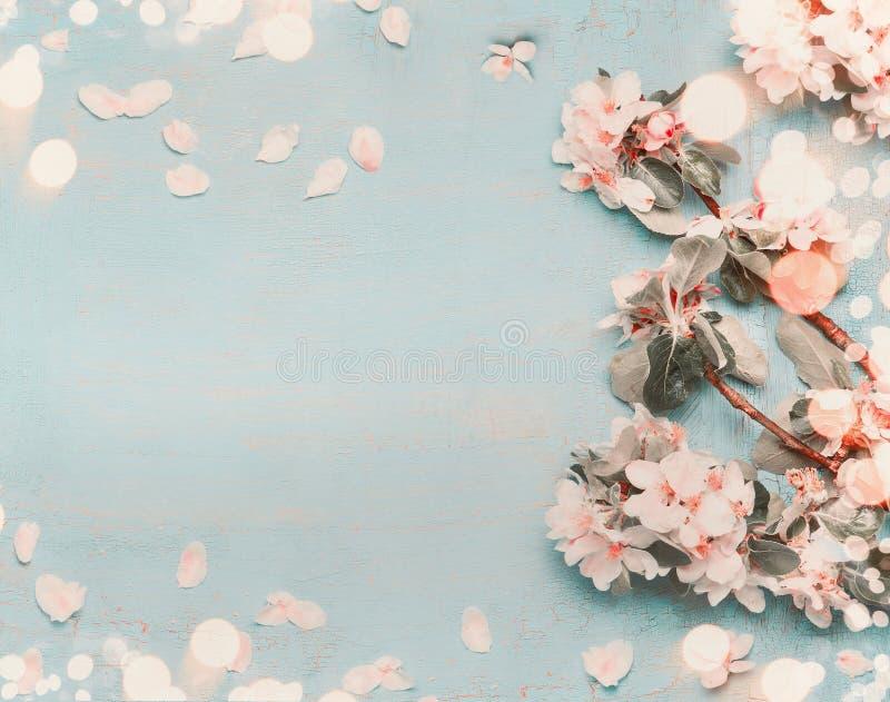 在浅兰的背景的俏丽的春天开花与bokeh,顶视图,淡色 库存图片