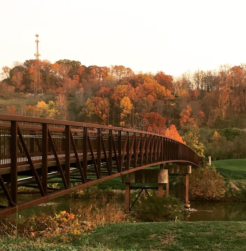 在浅河的桥梁 图库摄影