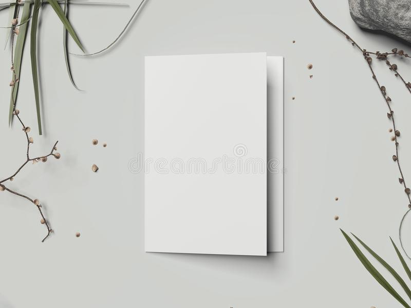 在浅灰色的背景, 3d的白色空白的纸板小册子翻译 向量例证