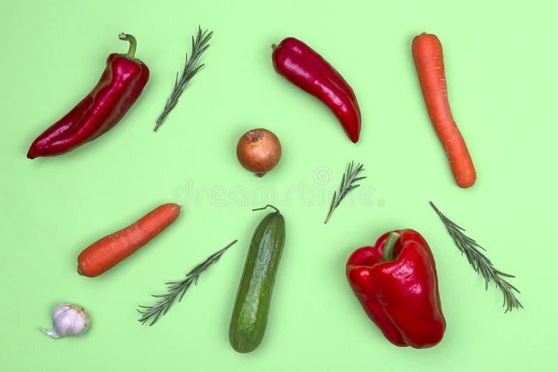 在浅绿色的背景的新鲜蔬菜 免版税库存照片