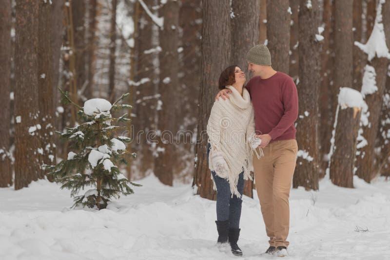 在浪漫步行的年轻夫妇在冬天森林里 图库摄影