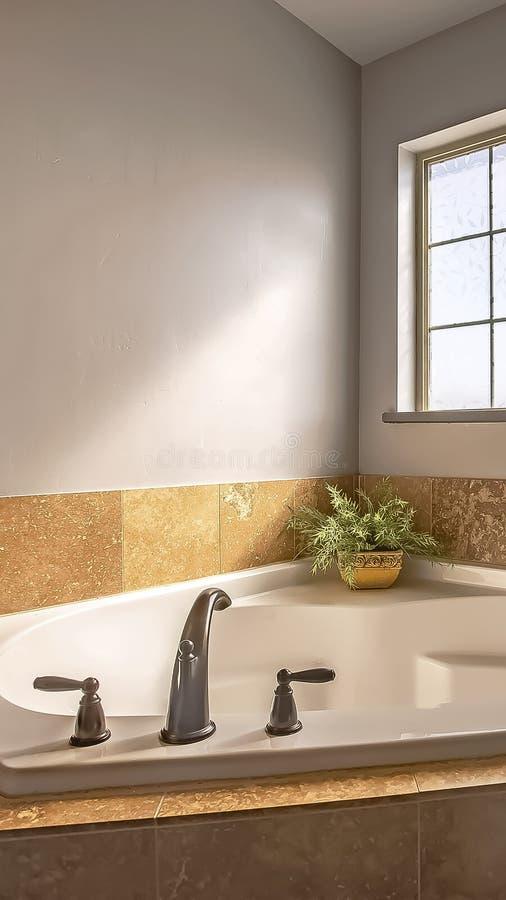 在浴缸建立的垂直的框架在一个卫生间的角落有毛玻璃窗口的 图库摄影