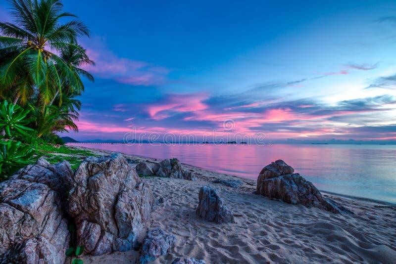 在海和多岩石的海滩的紫罗兰色日落 免版税库存照片
