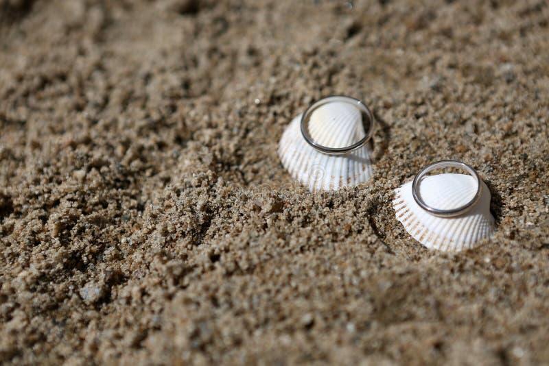 在海壳的婚戒 免版税库存照片