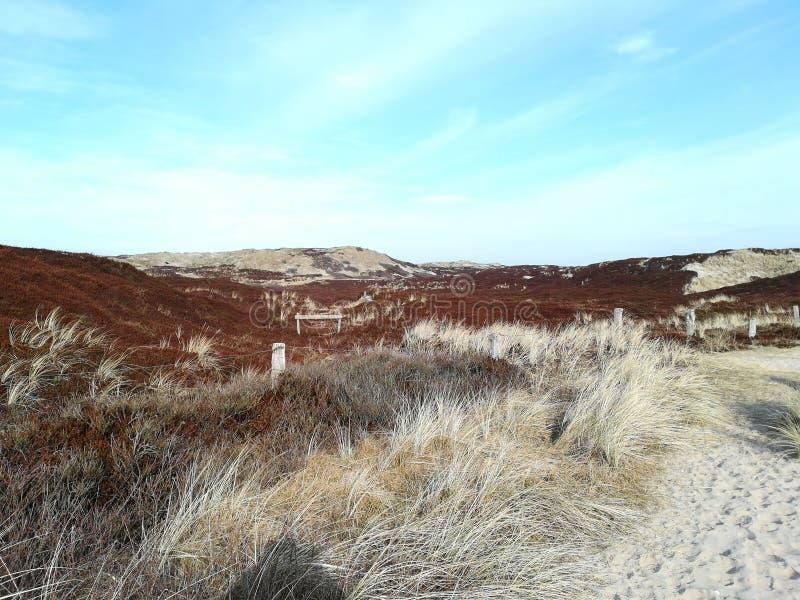 在海岛上的沙丘 免版税库存图片
