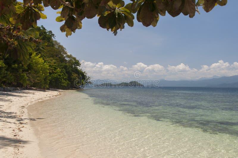 在海岛上的海滩。菲律宾 库存图片