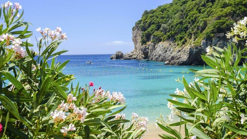 在海岛科孚岛,希腊上的海滩Paleokastritsa 库存图片