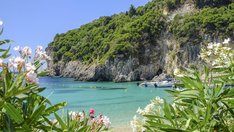 在海岛科孚岛,希腊上的海滩Paleokastritsa 免版税库存图片