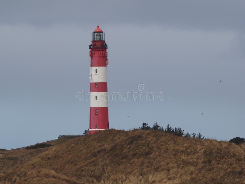 在海岛amrum的灯塔,德国海岸 库存照片