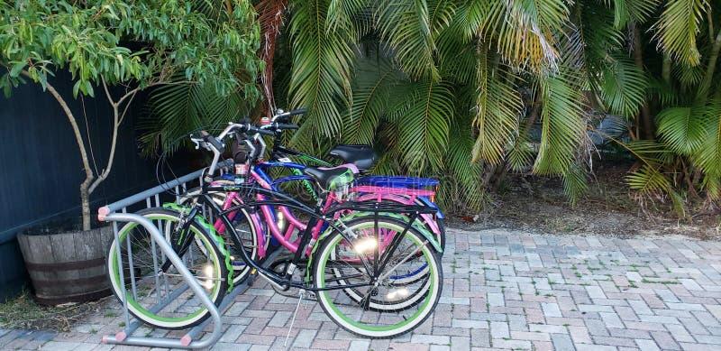 在海岸的五颜六色的自行车 免版税库存图片