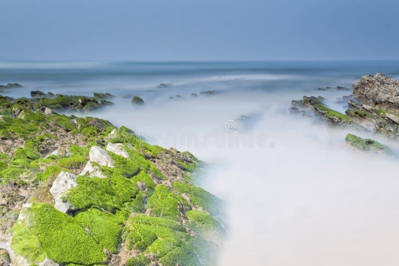 在海岸的夏天 免版税库存照片