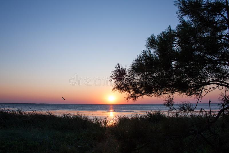 在海岸的日落,地平线 库存图片