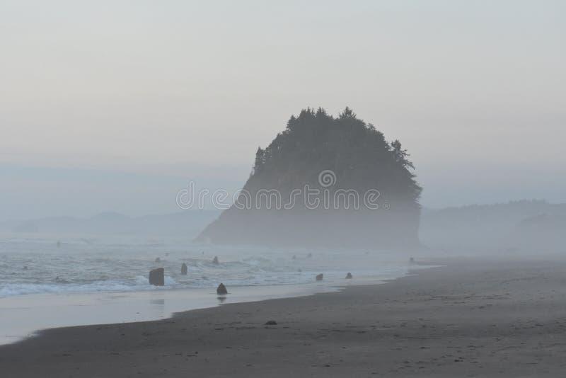 在海岸的有雾的早晨 库存图片