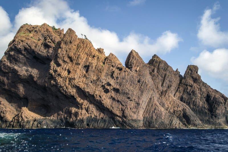 在海岸的树盖的蓝色海上的高岩层 库存图片