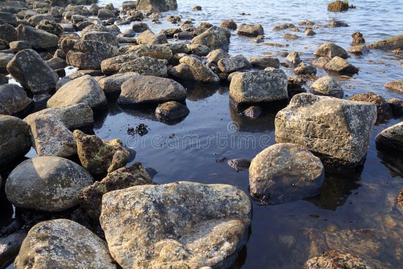 在海岸的漏油 库存照片