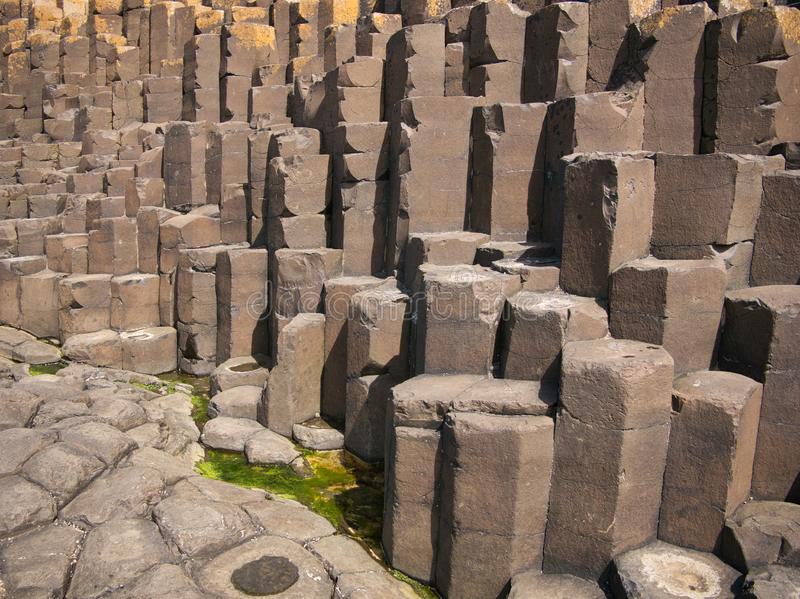 在海岸的许多六角石头在堤道附近 免版税图库摄影