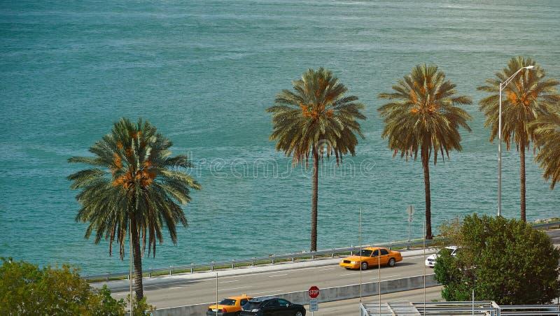在海岸线佛罗里达的路 免版税库存图片