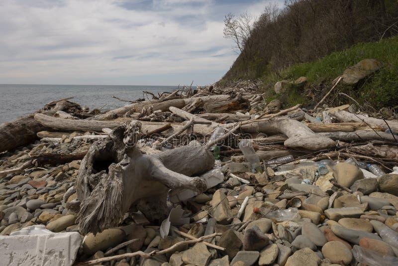 在海岸线的垃圾堆,塑料,泡沫干燥日志-一个环境灾害 免版税库存图片