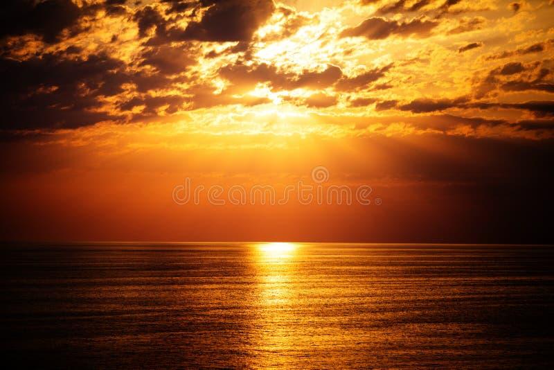 在海或海洋,热带手段上的美好的日落 免版税库存照片