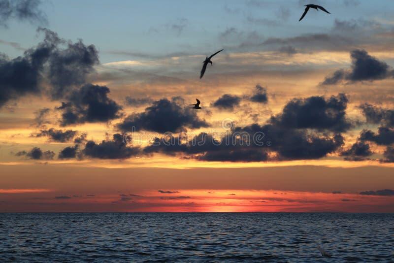 在海有重的Cloudscape的,天空替换的日落 免版税库存图片